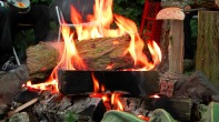 Feuer unterm Nussbaum...