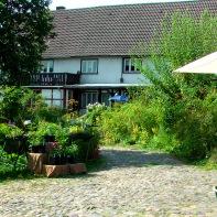 Der Gartenhof im Juni 2013