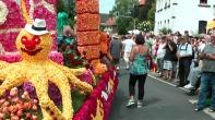 Für das Schmücken der Wagen werden jährlich bis zu 300.000 Blüten verarbeitet.