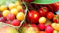 Tomaten, Mirabellen, Pflaumen, Äpfel, eine Rose und Getränk ... alles streng BIO, versteht sich ...