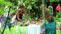 Kuchenbasar im Garten hinter der alten Zehntscheune