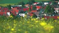 Rapsfeld oberhalb Steinfurths