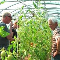 Kostprobe und Feldführung 2012