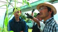 Mitso Saito (rechts im Bild) - Farmmanager der Steinfurther Shumei-Farm