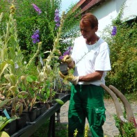 Rainer, unser Haus-und Hof-Gärtner