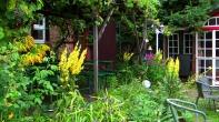 Eingang zu Christoph´s Weinkeller im Juli 2014 (kann man auch mieten :-) www.gartenhof-loew-zu-steinfurth.de