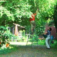 """Unsere nicht ganz ungefährliche """"Schüttel-den-Baum-von-Leiter-Operation"""" im August 2012 :-)"""