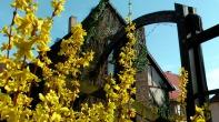 691-044-Gartenhof-Website-MaxBryanFoto-S3560018-bv1-1024xCC
